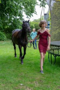 003-Molly&Horses-01June2018